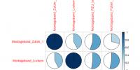 Korrelationsanalysen und Werteverläufte aus R